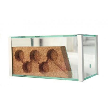 AntHouse-Corcho-Cristal 20x10x10 Anthouse De Corcho