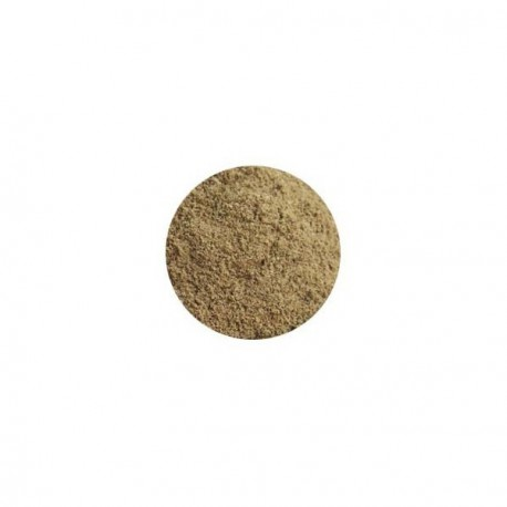 1000g Clay Materials Anthouse