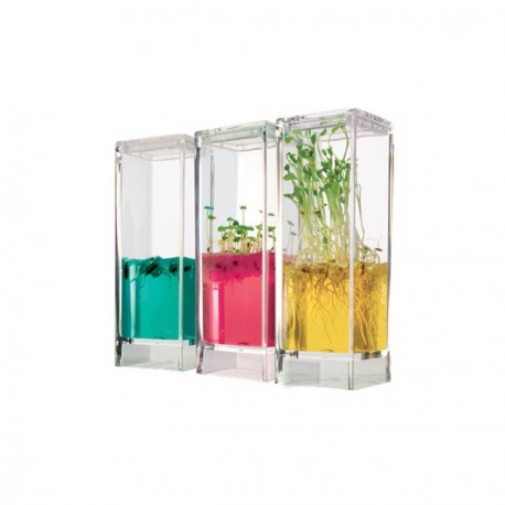 Ecosistema Plantarium Garden Lab Anthouse Para Niños-GEL