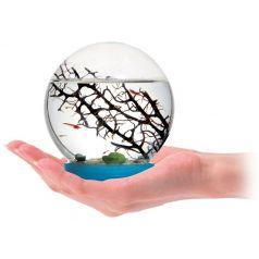 Aquatisches Ökosystem - Aquarium - Marine Biosphäre (Garnelen inklusve)