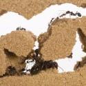 Kit AntHouse Basic- Sand-Ameisennest mit Königin und Gratis-Ameisen...