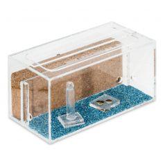 Kits AntHouse Kork Acryl (Mit Ameisen inklusive) Kits Ameisennester