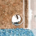 AntHouse-Cork-Acrylic 20x10x10 Cork Anthouse