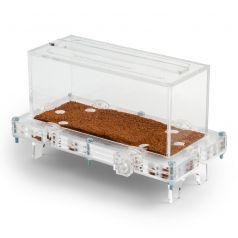 10x20x7cms Caja de forrajeo Grande Modular Seta  Hormiguero Modular Seta