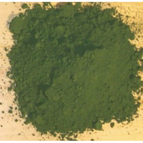 100g Green Pigment Decorations Anthouse