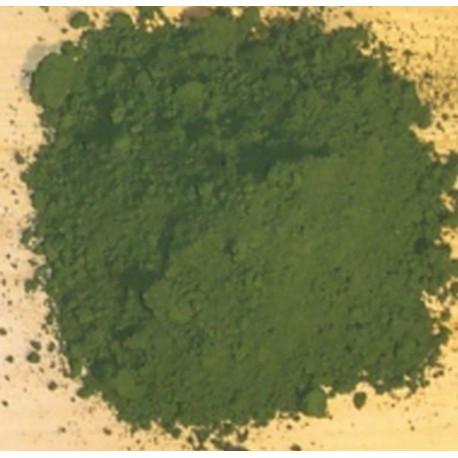 Grünes Pigment 100g Dekoration Anthouse