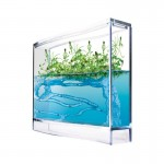 Antquarium Gel LIGHT AND SEEDS (FREE Ants included) Educational for children Anthouse