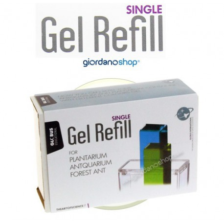 Gel Refill For Kids-GEL Anthouse