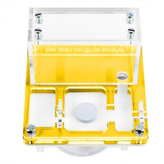 AntHouse 10x10x1,3 cms Con Caja Grande - Tipo Seta Anthouse De Acrílico