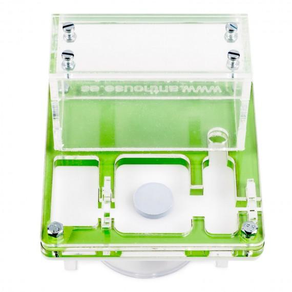 AntHouse 10x10x1,3cms With Big Box - Mushroom Acrylic Anthouse