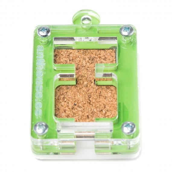 AntHouse Mini Hormiguero Corcho Porta Reinas 5x4x1,3cms Anthouse  Hormigueros