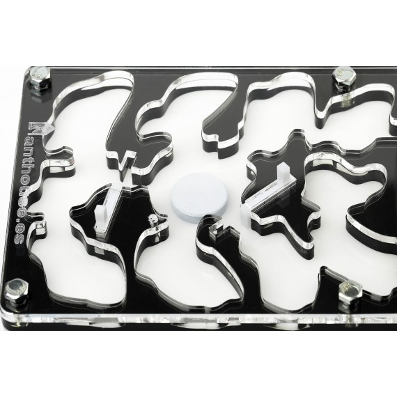 Acrilico NaturColor 10x20x1,3cms Seta Anthouse  Hormigueros
