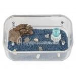 Antcubik-Caja de Forrajeo Medium Anthouse Cajas de Forrajeo