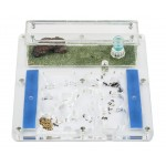 Kits AntHouse - Educativo II (Hormigas con Reina incluida Gratis) Anthouse Kits Hormigueros