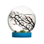 Ecosistema Acuatico - Gambario - Biosfera Marina (Con gambas incluidas) Anthouse OUTLET