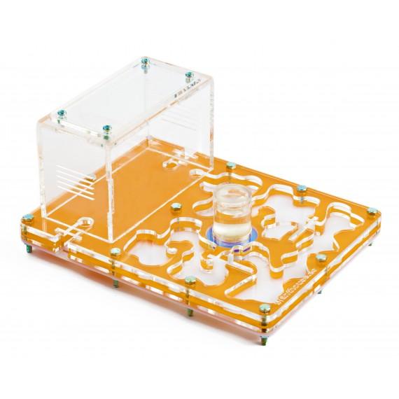 Acrylic NaturColor 20x15x1,5cms Sponge With Deposit Ant's Nests Anthouse