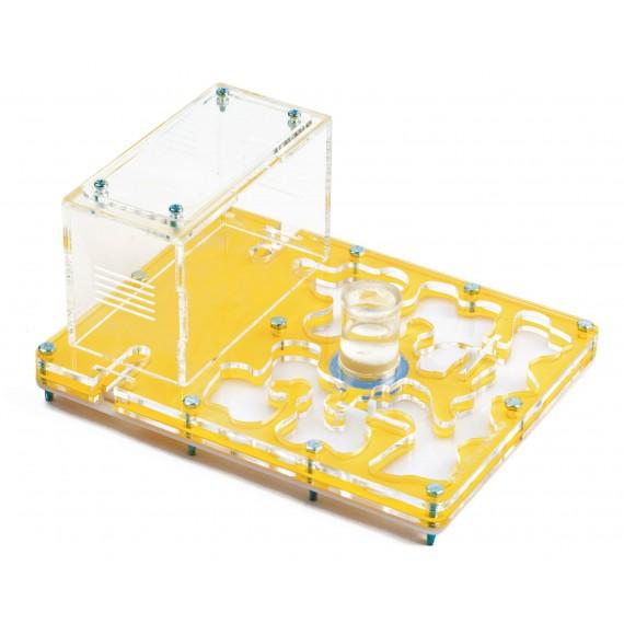 Acrilico NaturColor 20x15x1,5cms Esponja Con Deposito Anthouse  Hormigueros