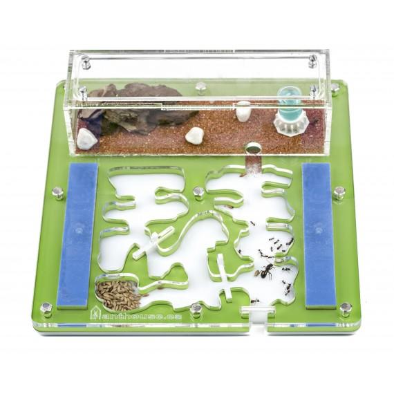 copy of Acrylic NaturColor 20x20x1cms Foam Ant's Nests Anthouse