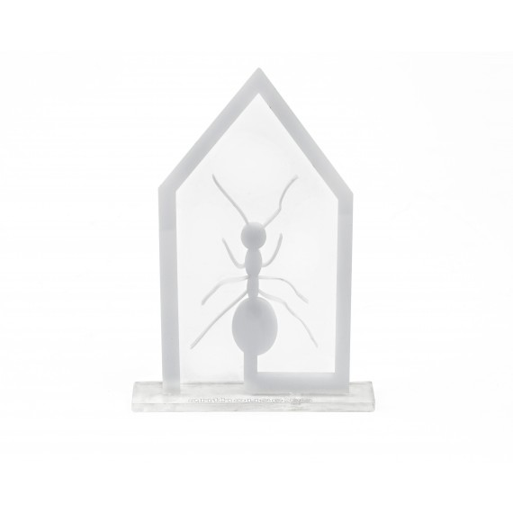 Hormiga Trofeo Pared Anthouse OUTLET