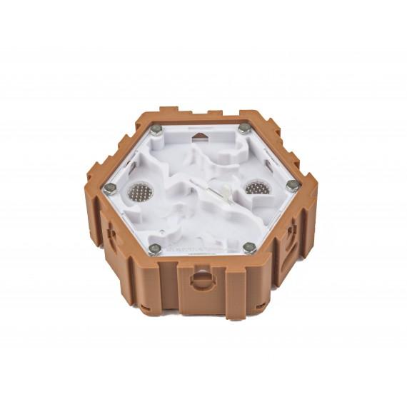 Hormiguero Modular Hexagonal 3D - Hembra-Macho -  Hormigueros 3D Modulares