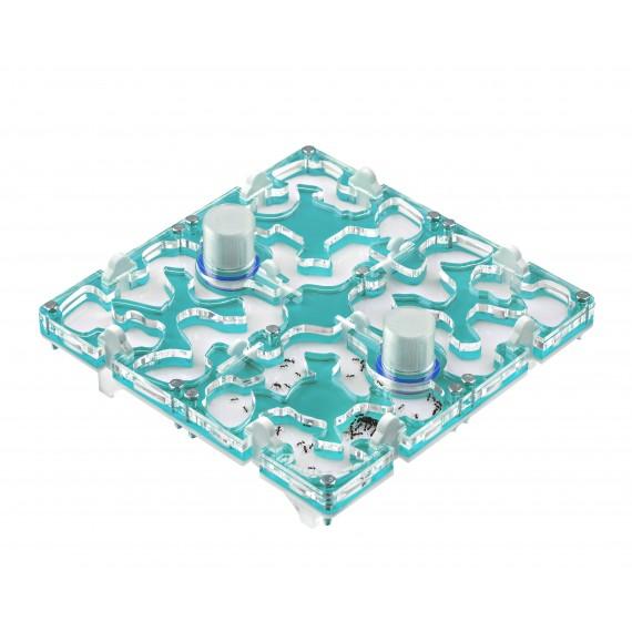20x20x1,5 cms Modular Deposito de Colores  Hormigueros Modulares