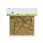Acrylic Model T Kit BIG (25x20x1.5) Ants nests Kits Anthouse