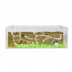 Anthouse Acrylic BIG Starter Kit Ants nests Kits Anthouse