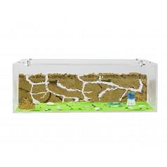 Natürliche Ameisenfarm aus...