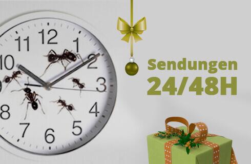 Envíos 24/48h